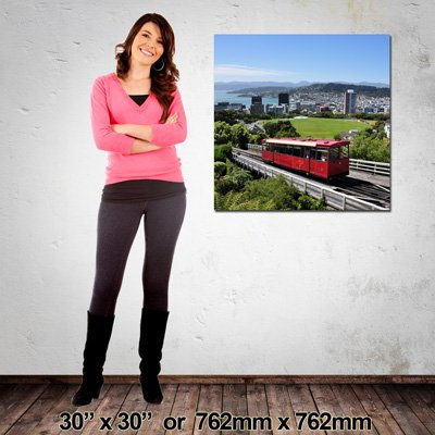 Made in NZ Canvas Print 762mm X 762mm