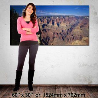 Large Canvas Print, NZ-Made, 1524x762mm