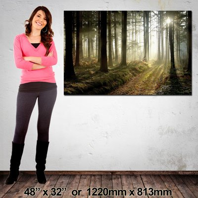 Quality Landscape Canvas Print, 1220x813mm, Made in NZ