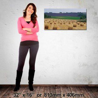 High Quality Landscape Photo Canvas, 813x406mm, NZ-Made