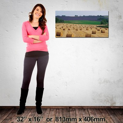 High Quality Landscape Photo Canvas, 813x406mm, NZ-Made