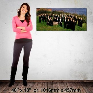 Quality Canvas Print, Panorama 1016x457mm, Made in NZ