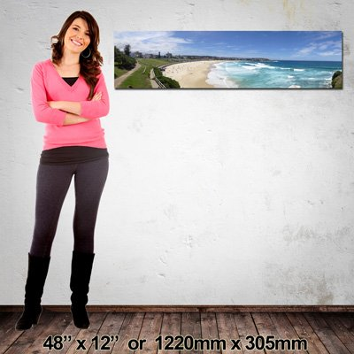 1220x305mm, NZ-Made Panorama Canvas Print