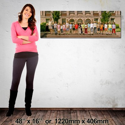 Panorama Canvas Print, 1220x406mm, NZ-Made