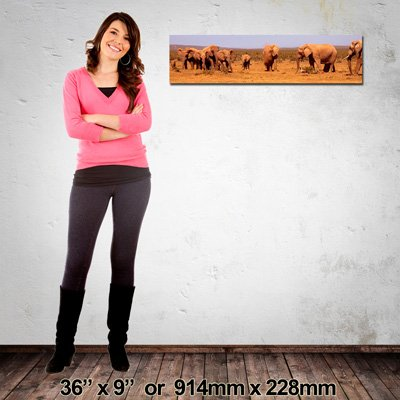 NZ-Made Quality Canvas Print, 914x228mm