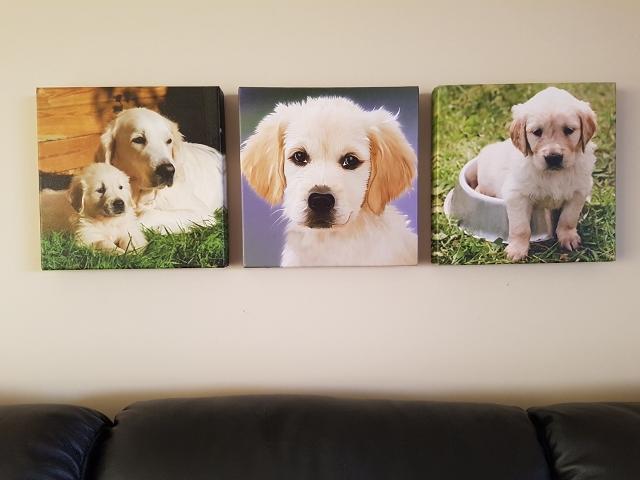 triptych canvas display ideas